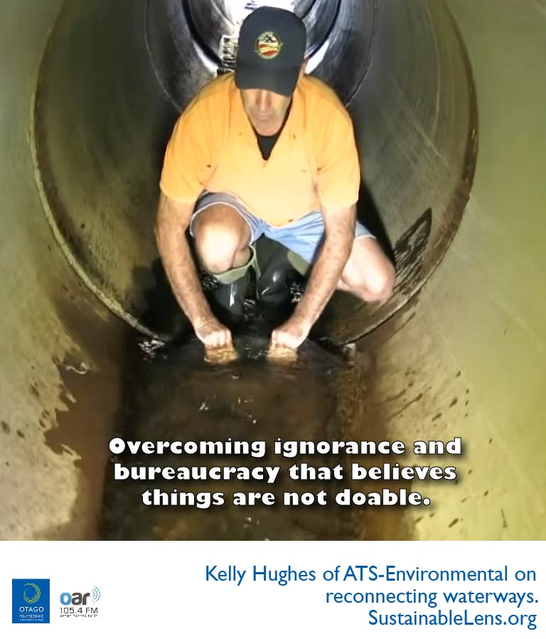 Kelly Hughes places a flexible baffle inside a concrete culvert.  He's wearing gumboots in about 12cm of flowing water.